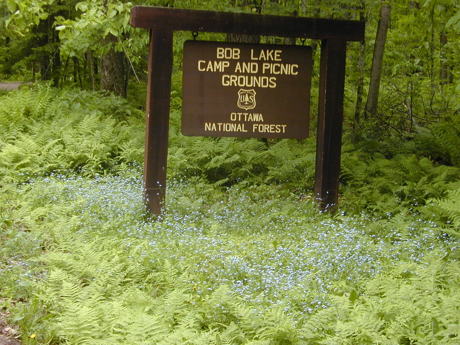 Sign for Bob Lake Campground