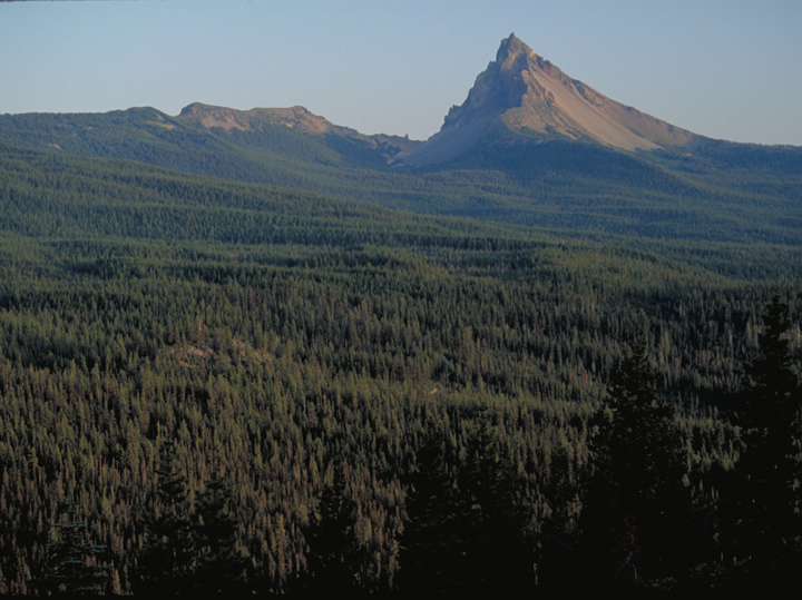 Image of Diamond Peak Wilderness