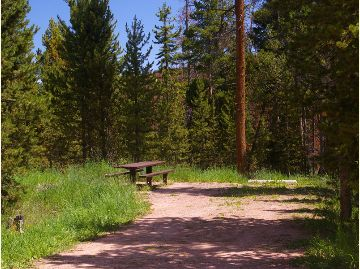 Photo of a camp site with a picnic table located in the Bridger Lake Campground.