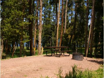 This is a photo of a camp site with a picnic table and fire ring.