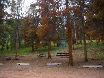 This is a photo of a group area with picnic tables and a fire ring.