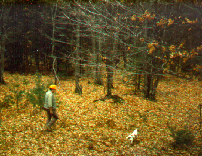Hunger with dog on forest