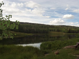 dixie national forest hiking