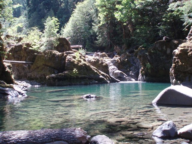 Image of Middle Santiam Wilderness Pool Shedd Camp