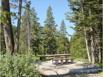 Typical site has picnic table and metal fire ring.
