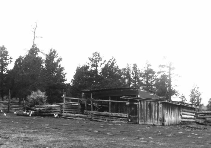 Photo of the Swett chicken coop and pig pen.  Photo courtesy of Nolan Toone.