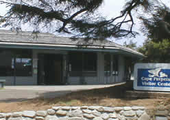 Photo of Cape Perpetua Visitor Center