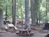 [Photograph]: Plaskett Campground - picnic table and trees.