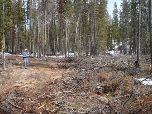 Photo of Campground damage