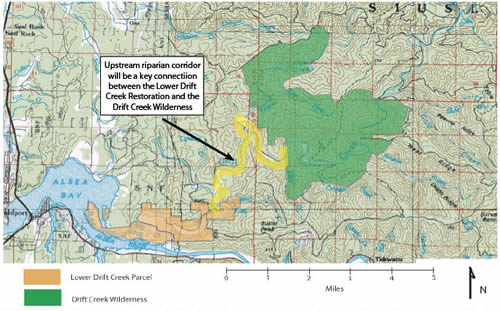 Alsea Oregon Map.Siuslaw National Forest Maps Publications