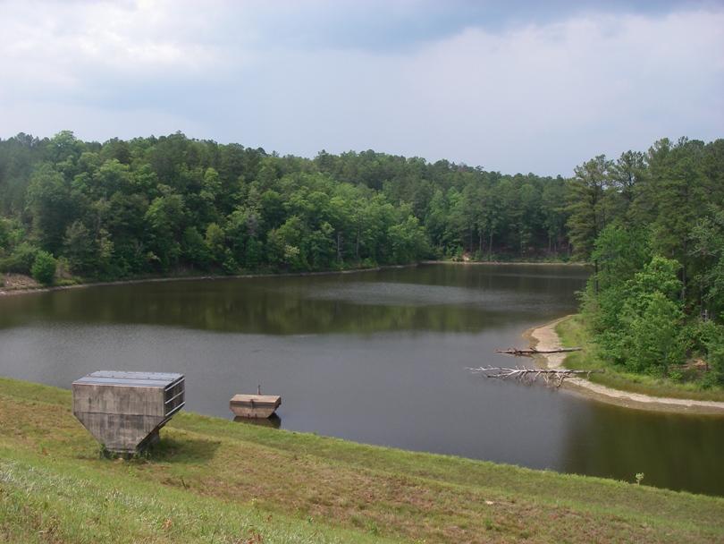Morgan Lake alabama