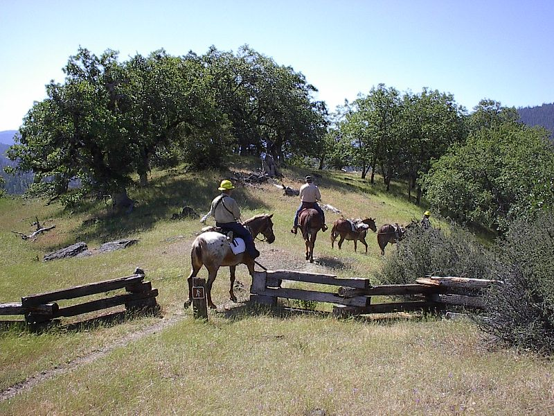 [Photograph]: Horseback Riders at  Wilderness Trailhed.