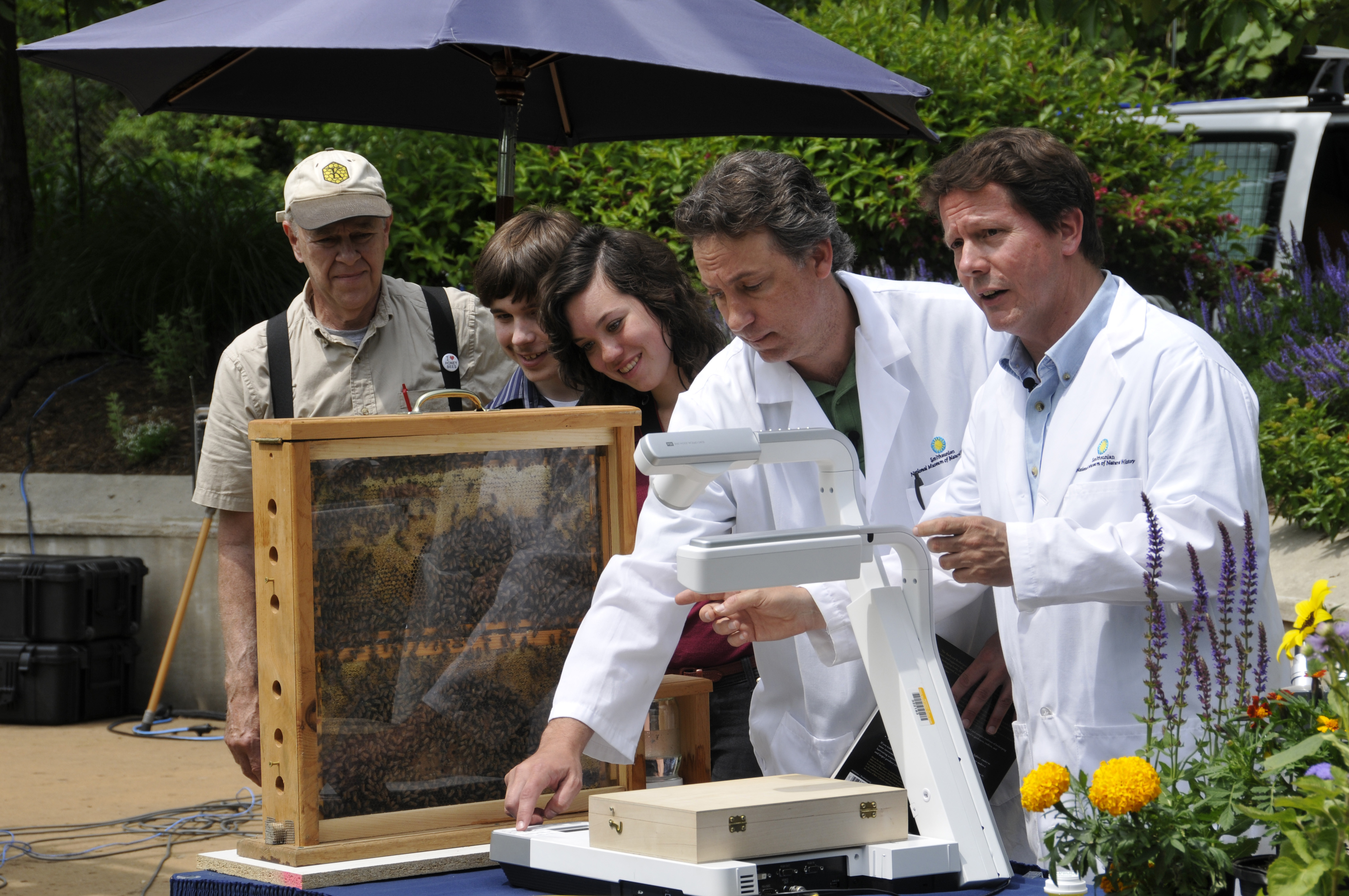 bee hive and scientists