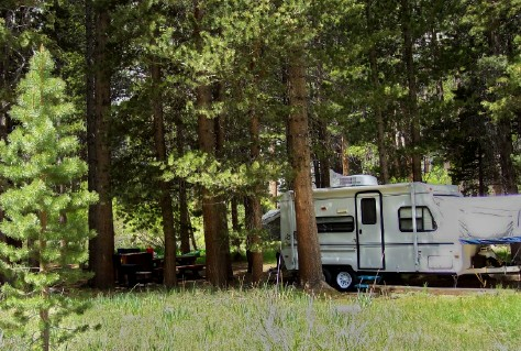 A travel trailer parked in the shade of Jeffrey Pines at Big Meadow Campground