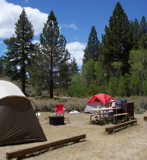 Colorful tents and a tidy campsite at Tuff Campground.