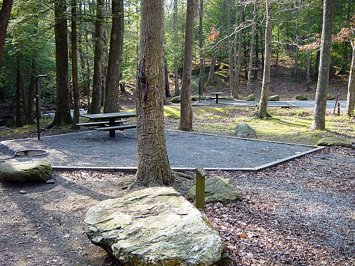 Typical campsites at the Hickey Gap Campground along Mill Creek