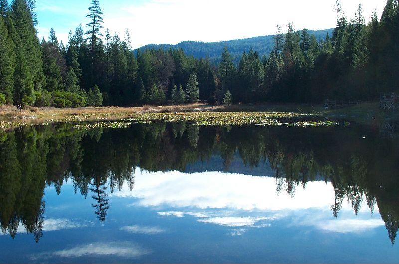 Mendocino National Forest - Hammerhorn Campground
