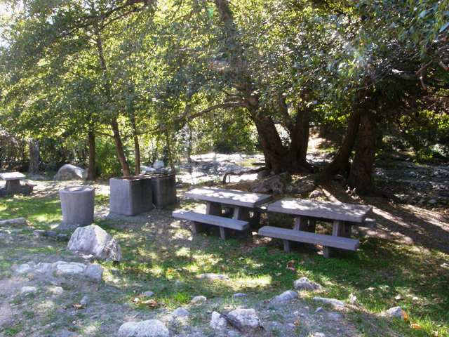 Two picnic tables in the shade at Applewhite Picnic Area in Lytle Creek