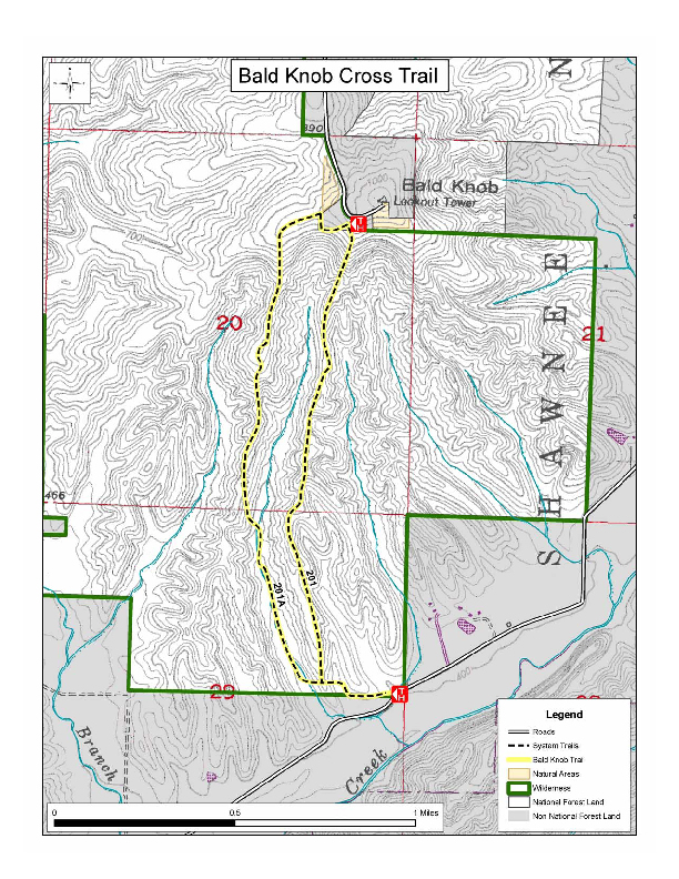 Image of Bald Knob Trail Map