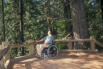A Forest visitor enjoys an accessible recreation site