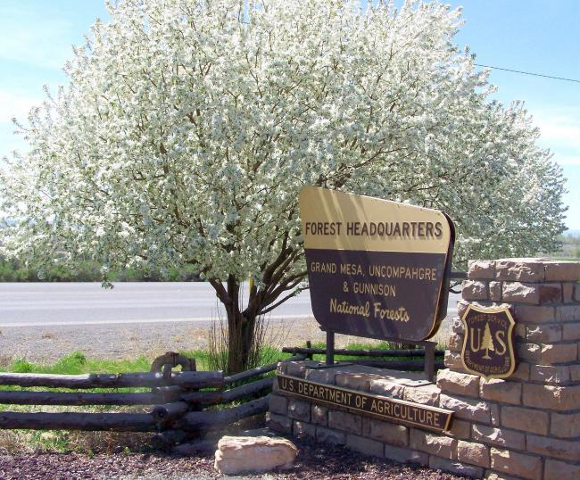 sign of forest Headquarters