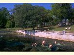 Swimming at Salt Springs