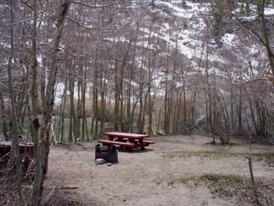 Campsite at Willow Campground