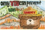 Smokey Bear in front of a burning hill side