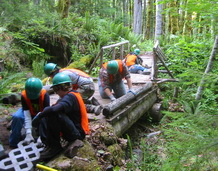 Discovery Team builds trail for the Forest