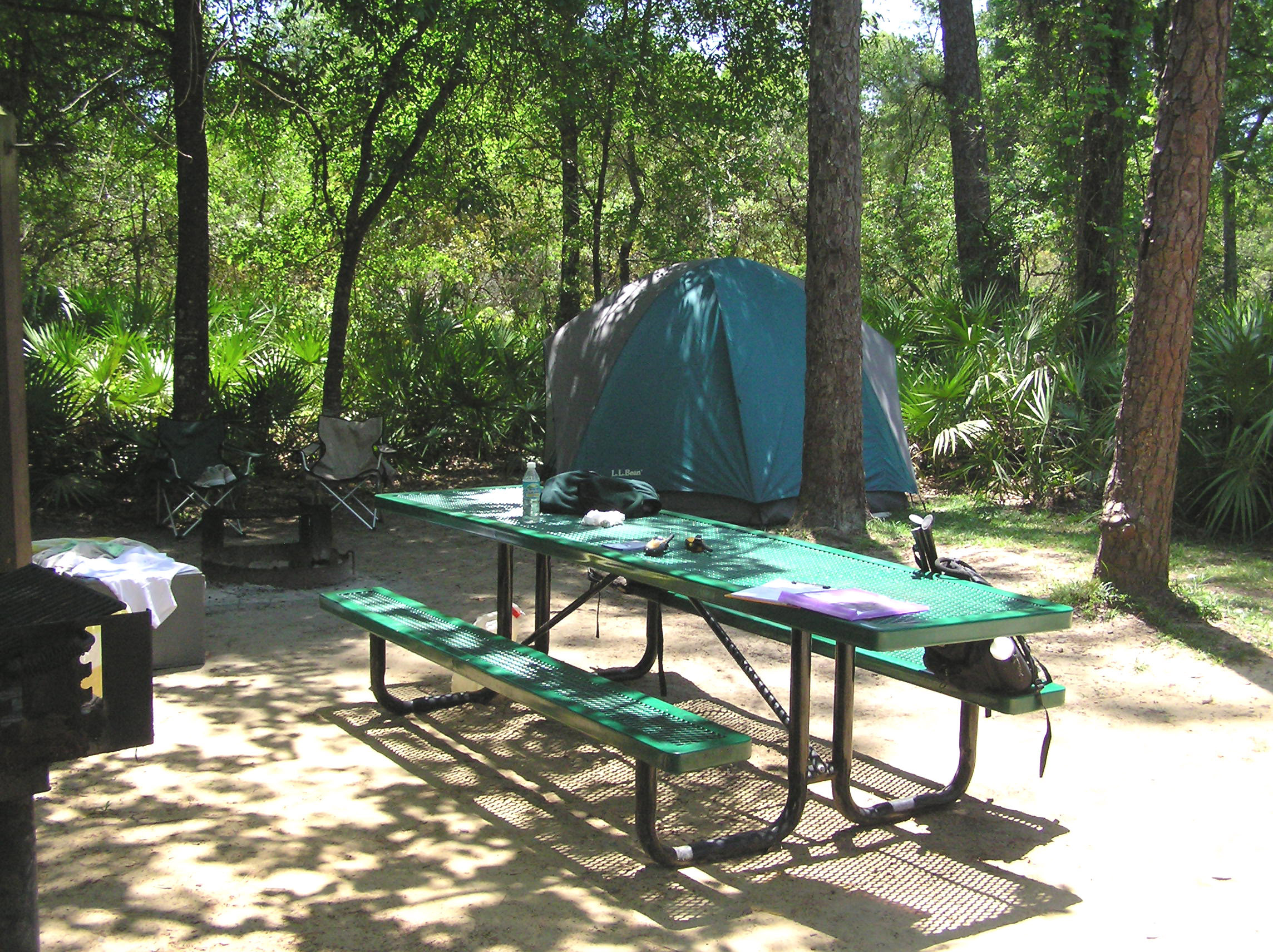 cabin camping in the woods. camping at juniper springs cabin in the woods