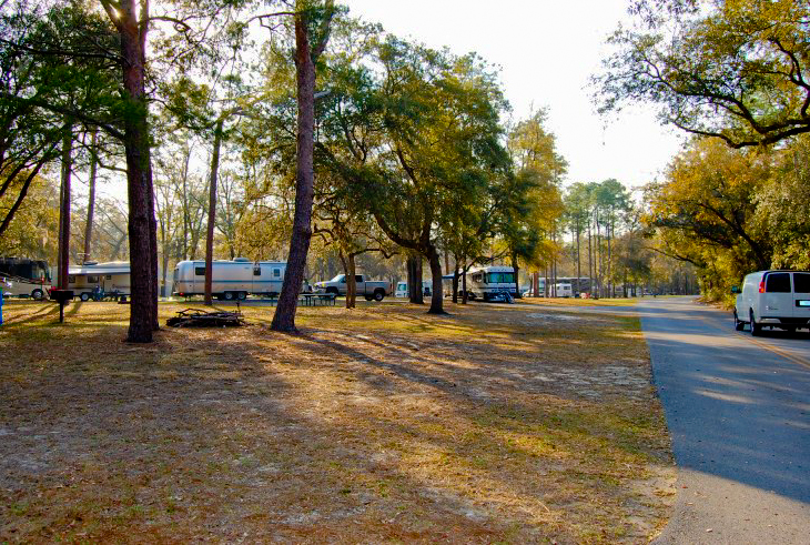 RV camping area in Salt Springs Recreation Area