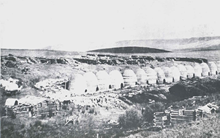 Picture taken somtime in 1880s of the original 16 kilns