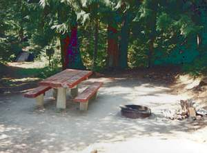Picnic table and fire pit at Indigo Springs Campground