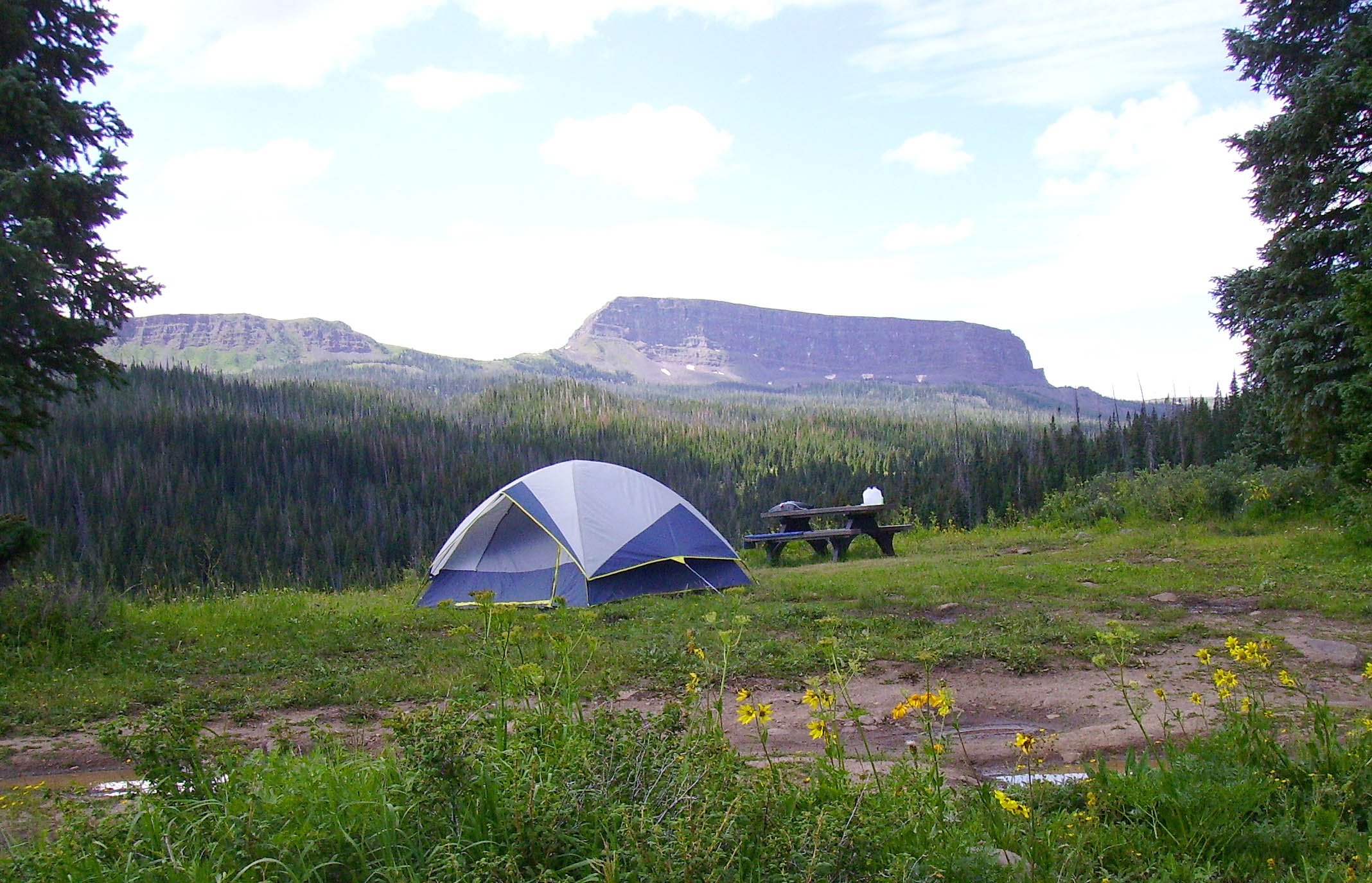 Medicine Bow-Routt National Forests & Thunder Basin National