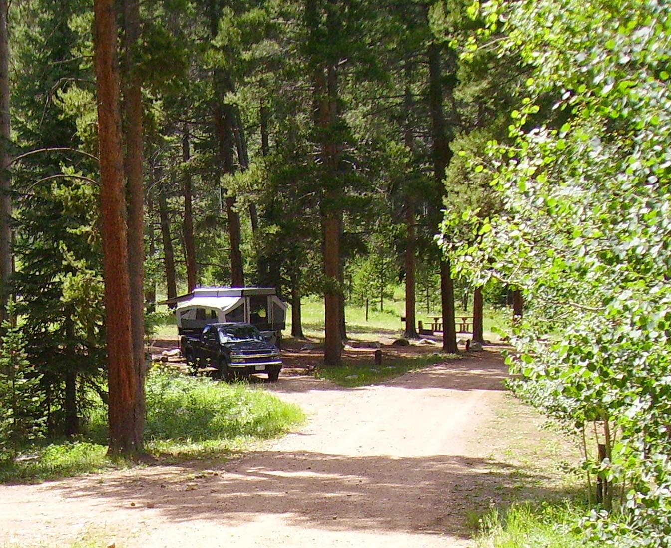 Photo of Lynx Pass campground