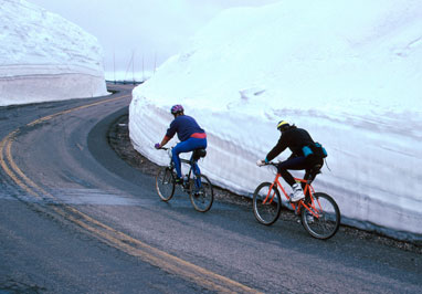 Photo of People Bicycling on the Beartooth Highway