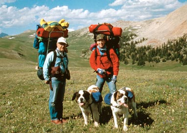 Photo of People Hiking with Dogs