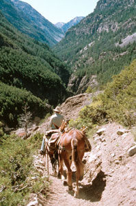 Photo of person riding horses near Deer Creek