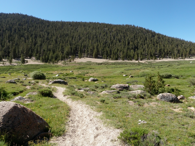 Golden Trout Wilderness Backpacking