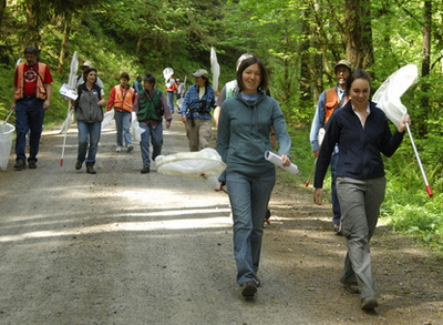 Group walking on forest road during a Hairstreak Butterfly training