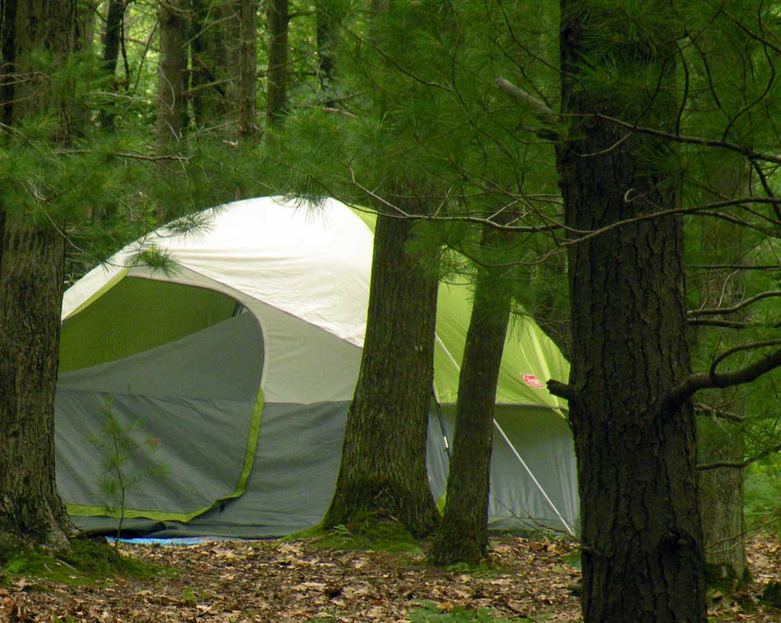 Camping at the Lake Michigan Recreation Group Area.