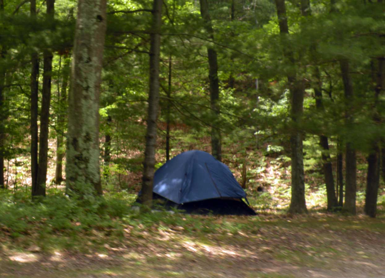 A tent at a campsite in one of the Huron-Manistee National Forest campgrounds.
