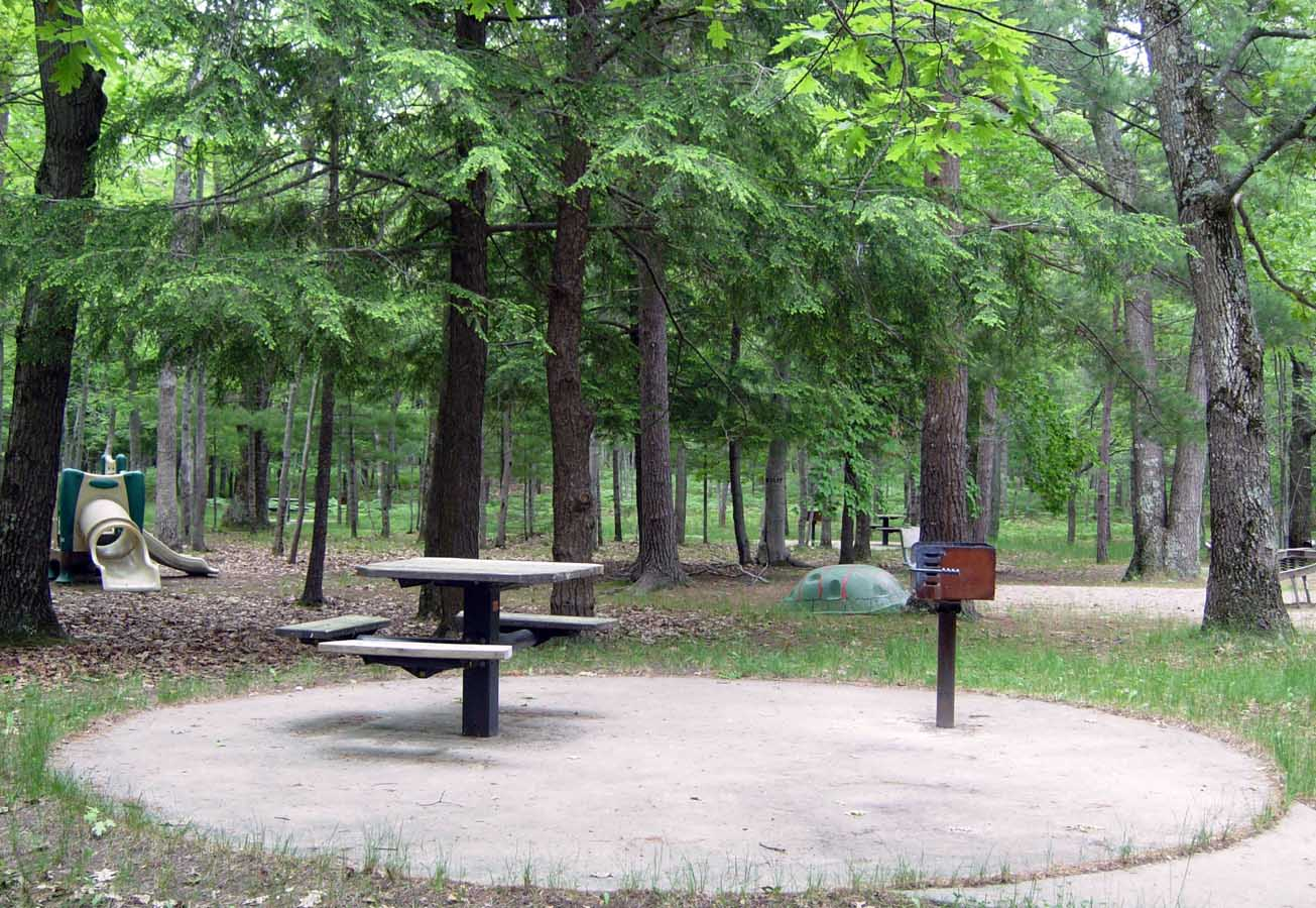 Lake Michigan Recreation Area - picnic area
