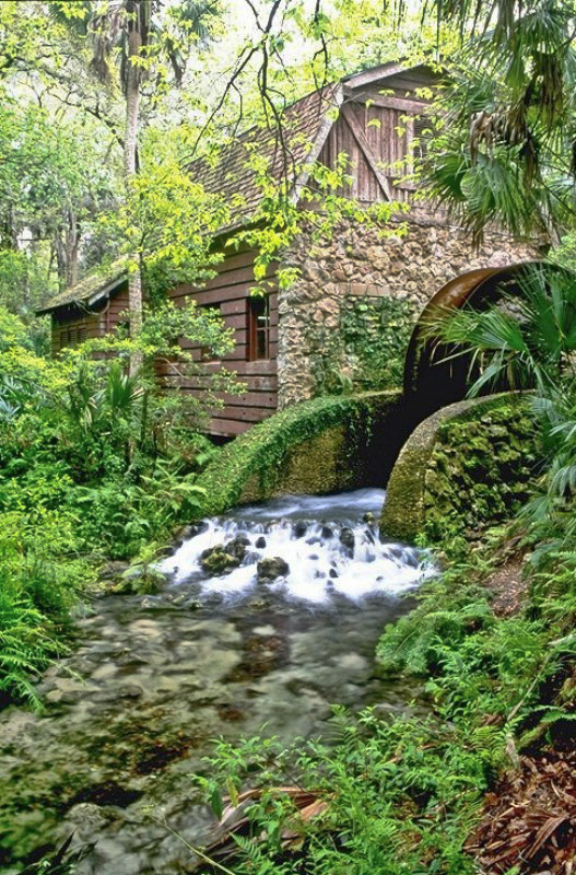 The Old Mill House at Juniper Springs