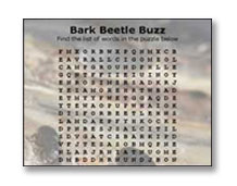 Bark Beetle Buzz Word Search