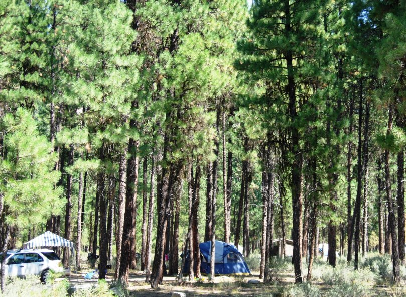 Boise National Forest - Camping & Cabins:Campground Camping