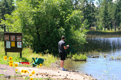 Image of forest visitor fishing at Cataract Lake Campground, Arizona