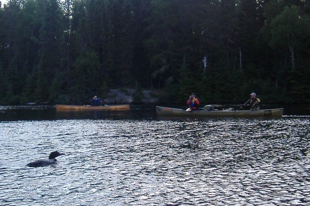 Canoeists with Loon