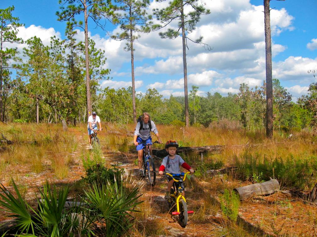 Ocala National Forest Bicycling Mountain Biking