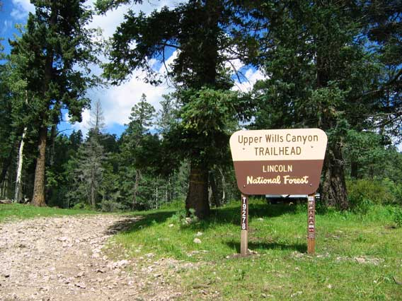 Wills Canyon Trailhead from FR64